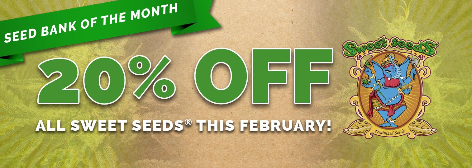 20% Off Sweet Seeds