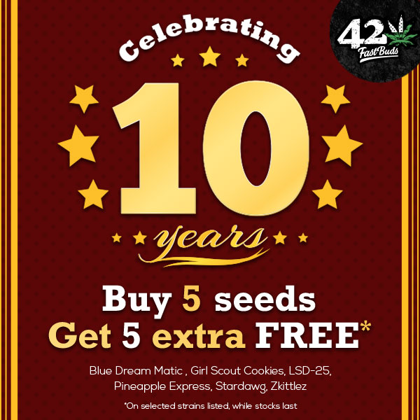 Buy 1 Get 1 FREE on selected 5 packs from Fast Buds