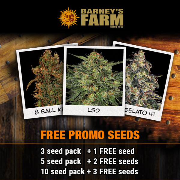 Barneys Free Seed Offer