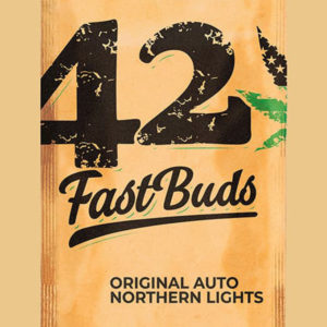 Auto Northern Lights - Fast Buds