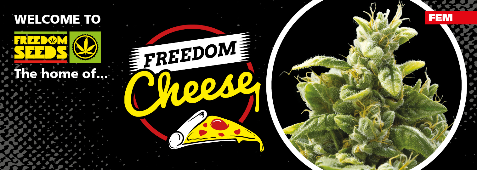 Freedom Cheese
