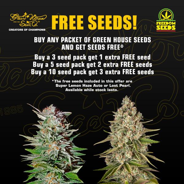 Free Greenhouse Seeds